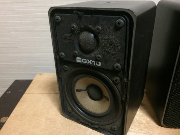 フォステックス・GX10の画像、グリルを外して正面から